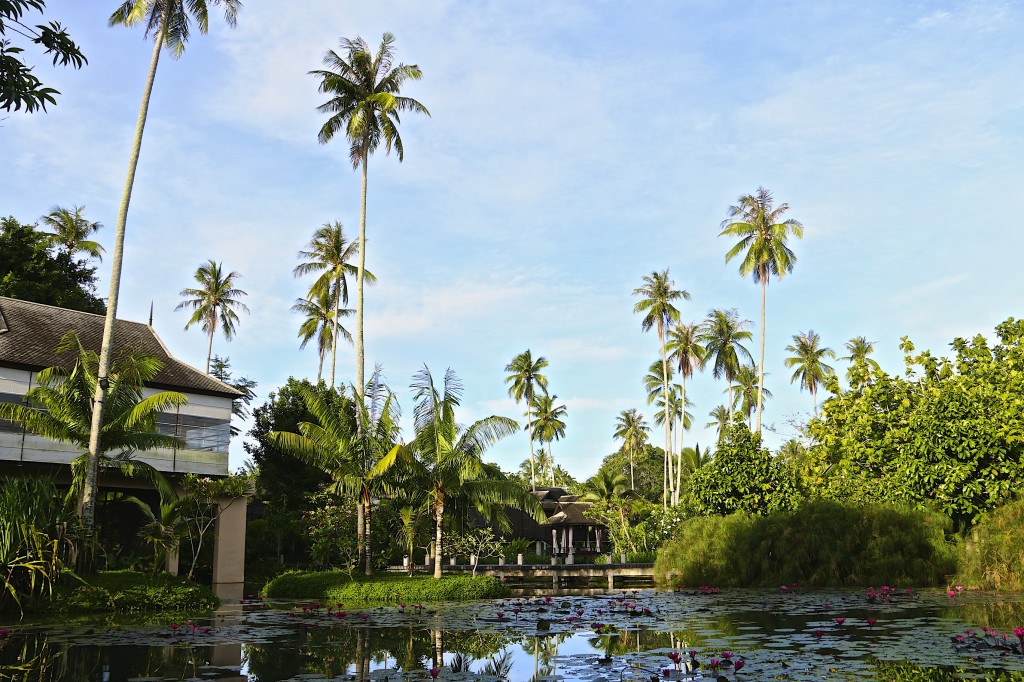Adoring scenery at Anantara Villa