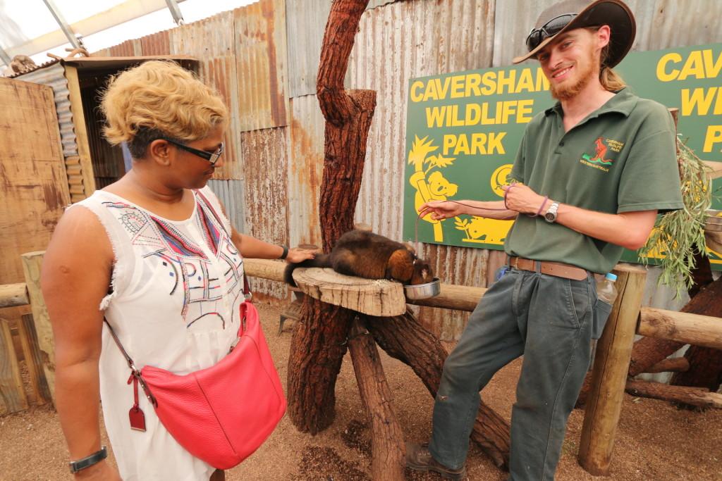 The Caversham team explained the animal type, behaviour