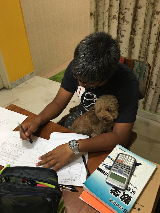 Manikam, seated on Elijah's lap, learning about mathematics