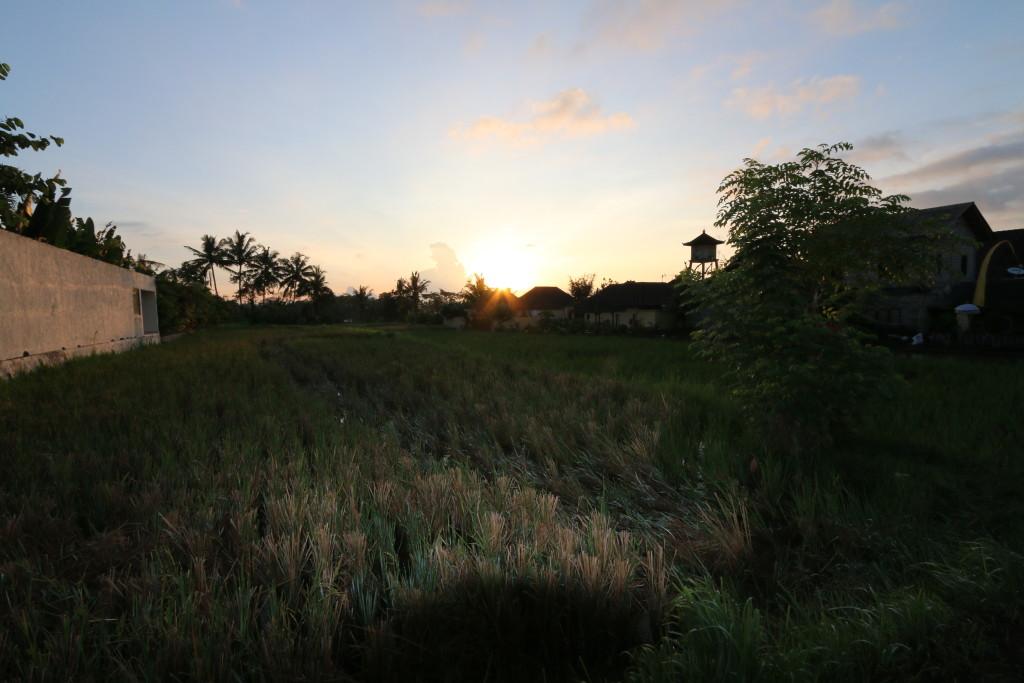 Sunrise, at Ubud, Bali
