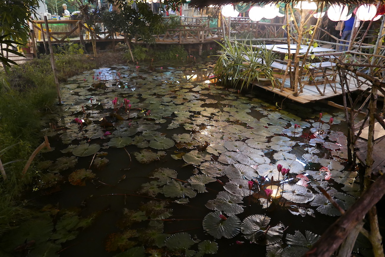 The lotus pond, which captured my attention, I love lotus