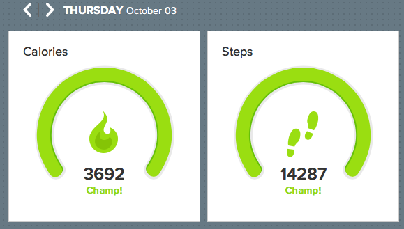 At an event, walking about here and there.  Wow, many steps achieved.